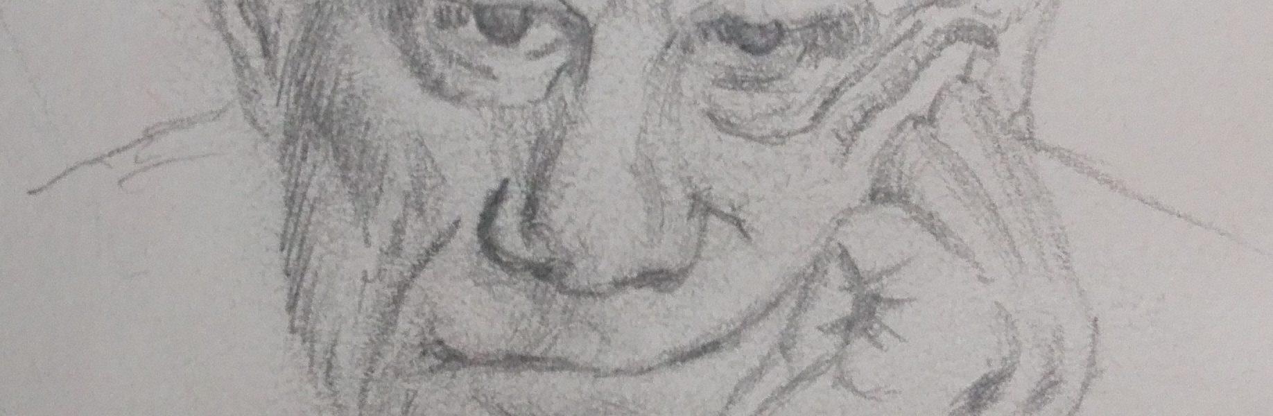Sandro Ferrucci - Grafite su carta - anno 1990 - ritratto di Alberto Moravia dettaglio da blocco schizzi